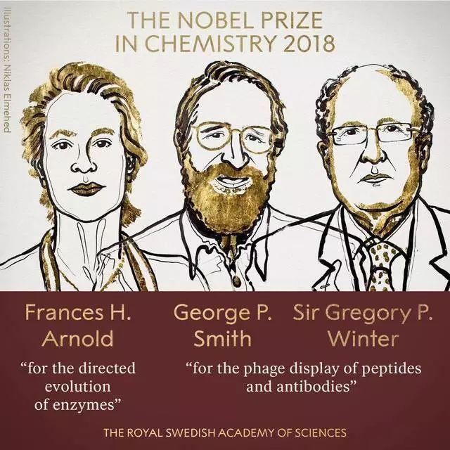 诺贝尔化学奖刚刚公布!他们研究出可解决人类化学问题的蛋白质