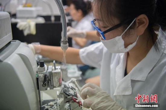 """中国癌症医药""""缺芯""""之痛:细胞模型依赖进口"""