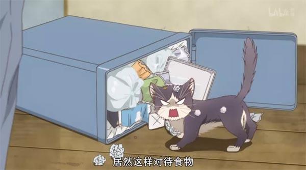 推新番:「同居人是猫」你永远不知道猫在想什么?