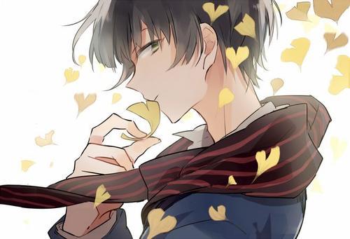 秋丽叶:我的宝藏男孩