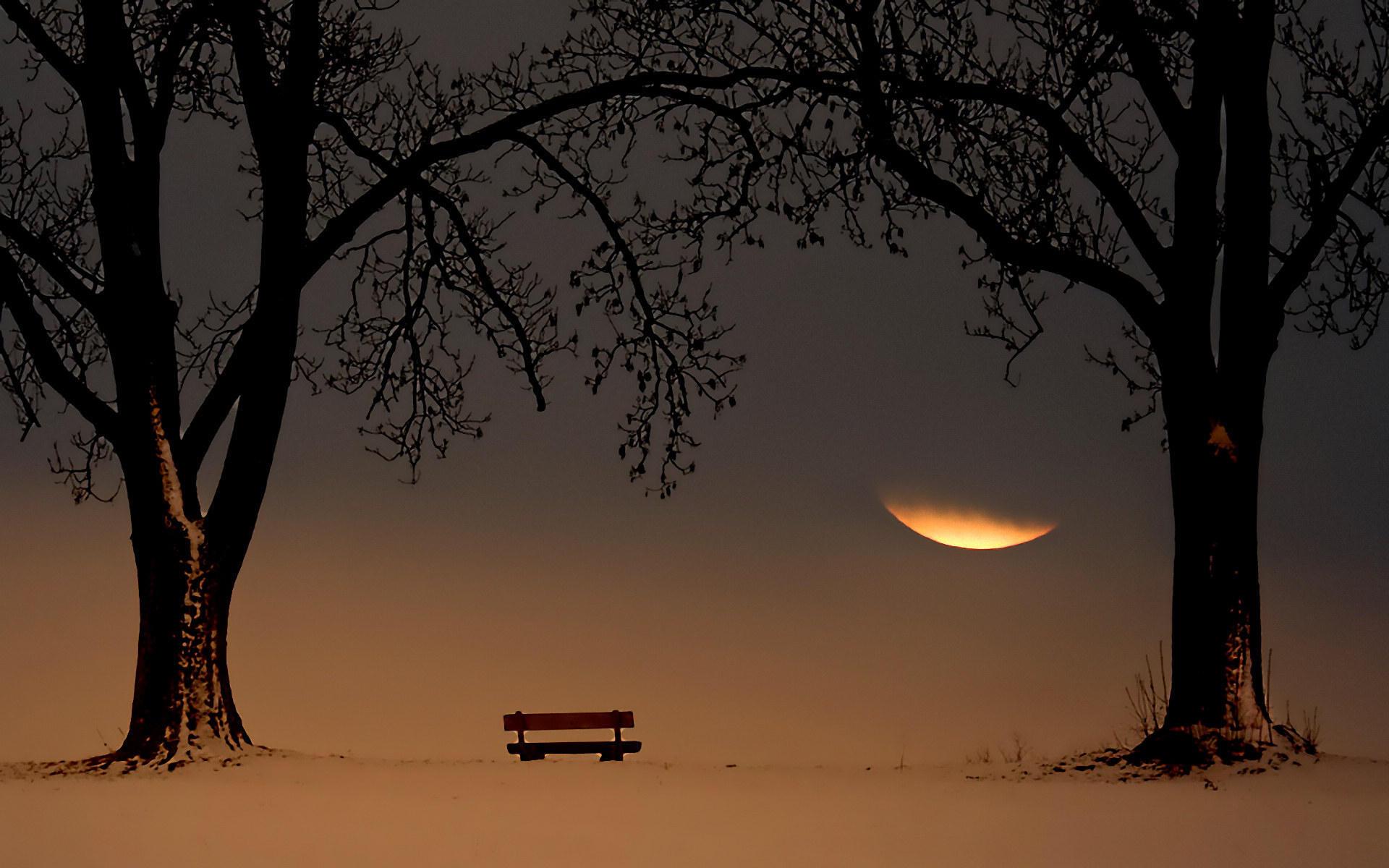 一个温柔了岁月,一个惊艳了时光