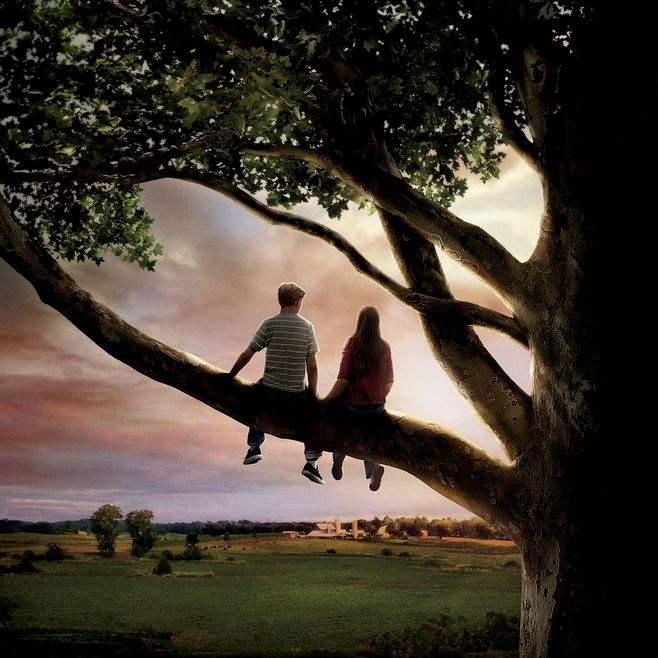 遇见一个人时学会审视一个人的全部,而不是沉溺一时的冲动——《怦然心动》