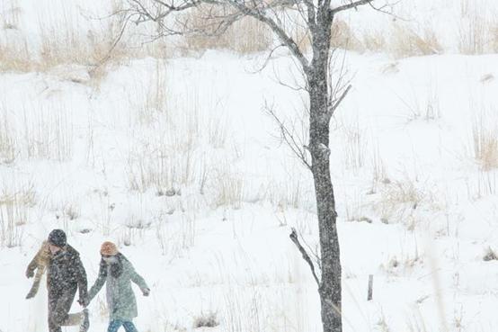 《挪威的森林》:不迷茫的人哪里有青春