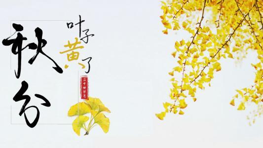 今日二十四节气之一:秋
