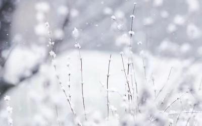 梁开欣:喜元前至大雪歌